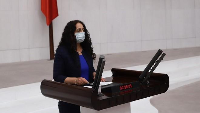 Van Milletvekili Orhan, Doğalgaz zamlarını meclise taşıdı