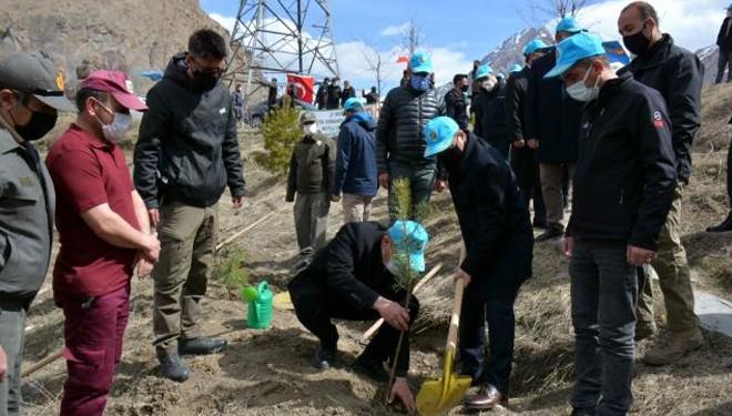 Hakkari'de bin 500 fidan toprakla buluşturuldu
