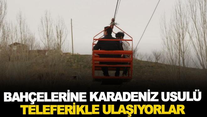 Bahçelerine Karadeniz usulü teleferikle ulaşıyorlar