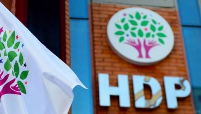 HDP'den Dünya Romanlar Günü kutlaması