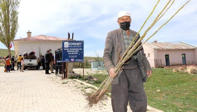 Edremit'te üreticilere ceviz fidanı dağıtımı