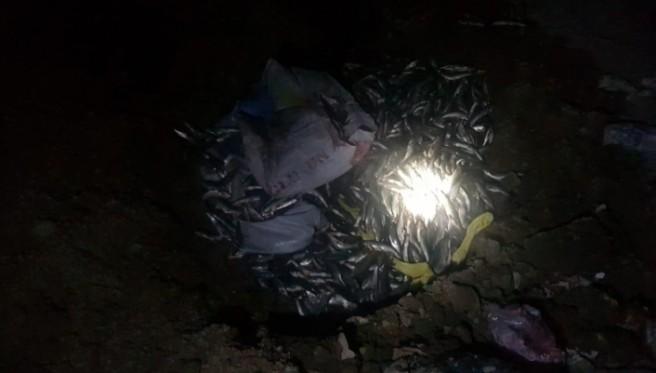 Muradiye'de 300 kilogram kaçak inci kefali ele geçirildi