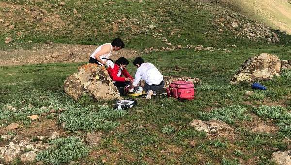 Erek Dağı'nda 'Uçkun' Toplarken Düştü, Ambulansla Hastaneye Kaldırıldı