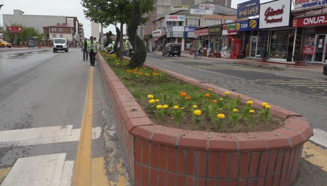 Erciş Caddeleri çiçeklerle süsleniyor