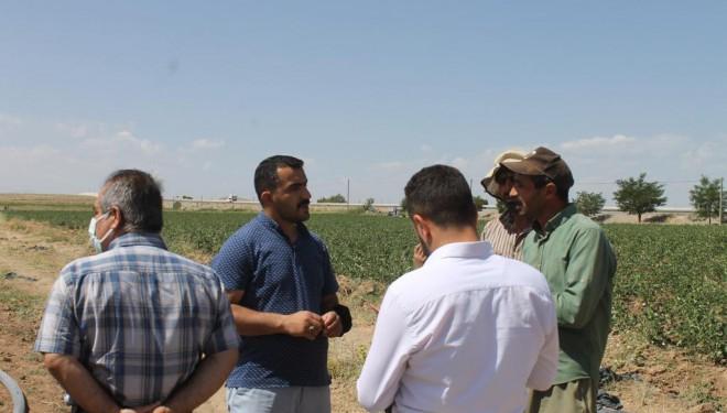 Hüda Par'dan Tuşbalı Çiftçilere Ziyaret