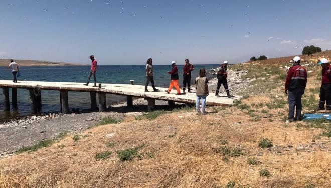 Adadaki ölü martılar toplatıldı