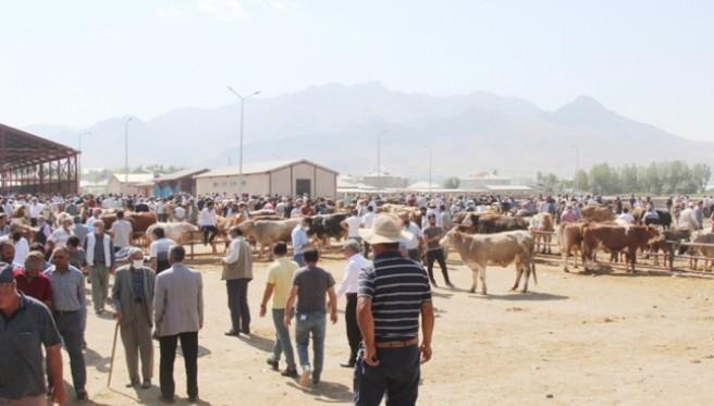 Van hayvan pazarında kalabalık var, satış yok