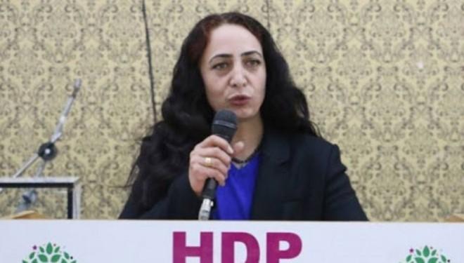 """HDP'li Orhan """"Van Gölü""""nü meclise taşıdı"""
