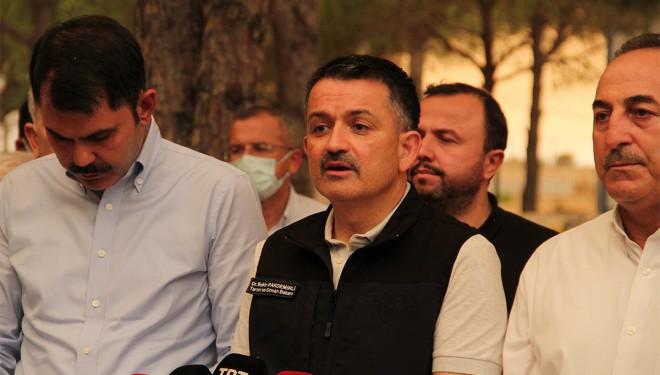 Bakan Pakdemirli: 'Toplam 85 orman yangınından 74 tanesi kontrol altına alındı'