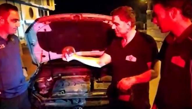 Aracın motor bölümüne giren kediyi polis sahiplendi
