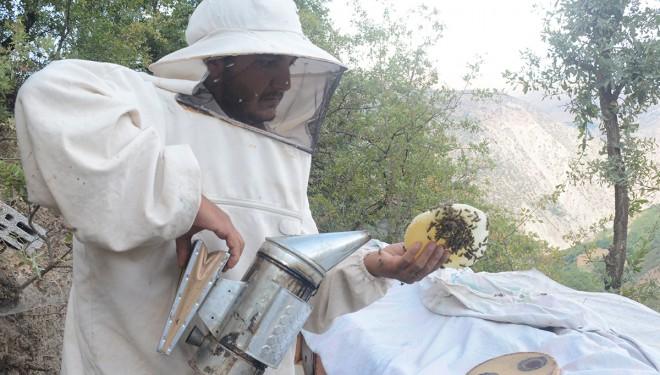 Hizan'ın 2 bin 700 rakımlı yaylalarında doğal bal üretimi