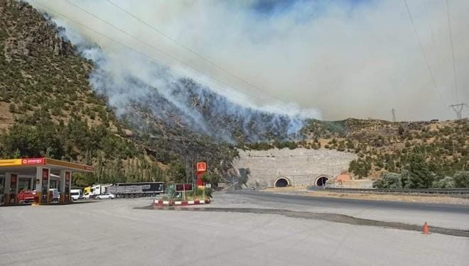 Bitlis'te 2 ayrı noktada örtü yangını çıktı