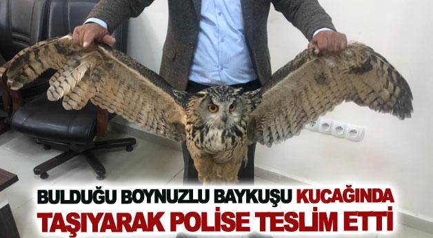 Bulduğu boynuzlu baykuşu kucağında taşıyarak polise teslim etti