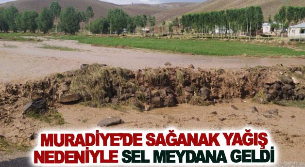 Muradiye'de sel