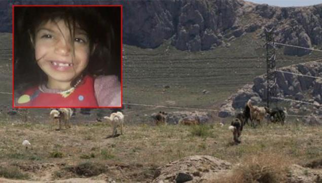 Köpeklerin saldırdığı 6 yaşındaki Ruken gözyaşları içinde defnedildi