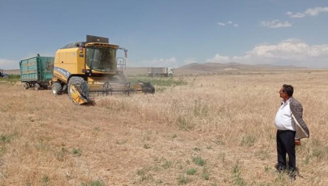 TMO'nun Fiyatları Çiftçiyi Zora Soktu (VİDEO)