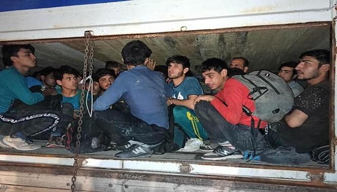 Gevaş'ta çimento torbalarının altından 78 Afgan göçmen çıktı