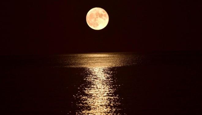 Van Gölü'nde görenleri mest eden görüntü!